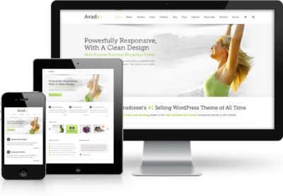 Theme Avada Professional Customization Specialist
