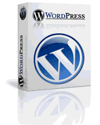 Ready for us to get started on your WordPress Website?